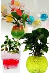 Гелевые шарики для цветов, большие, цветные (гидрогель)